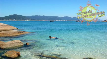 Mergulho na ilha do campeche - Floripa