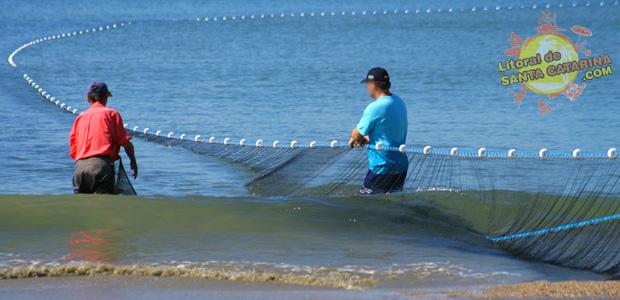 Pesca da tainha em Balneário Camboriú,  SC - Foto: Flavio Fernandes - LitoraldeSantaCatarina.com