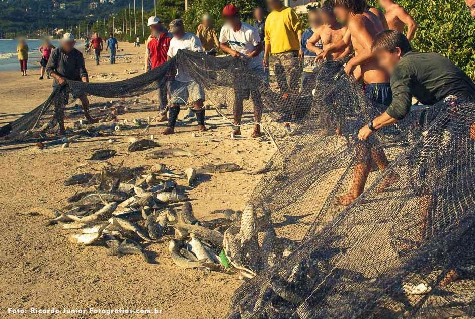 Pesca da tainha em Bombinhas – Fotos de Ricardo Junior / www.ricardojuniorfotografias.com.br